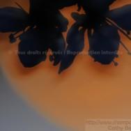 Collier d'ombre